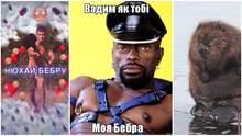 """Что такое бебра в украинском молодежном сленге и откуда взялся мем """"нюхай бебру"""""""