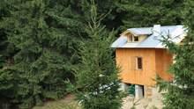 З краєвидом на Говерлу: в Карпатах з'явився унікальний будиночок – фантастичні фото