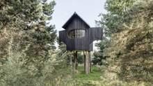 На дерев'яних ніжках: в Японії архітектор побудував обвуглений чайний будиночок – фото