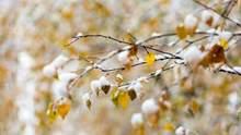 Прогноз погоди на 29 листопада: в Україні прогнозують температурний контраст