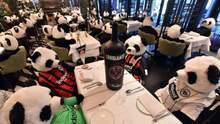 Плюшевые панды за столами: ресторатор устроил необычный протест – видео
