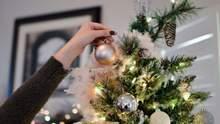 Місяць до Нового року: коли почнуть продавати ялинки й скільки вони коштуватимуть