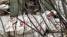 Шприци, маски, тести: у селі на Сумщині влаштували звалище коронавірусних відходів