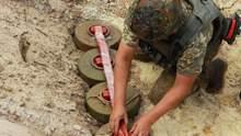 Саперам из США удалось разминировать более 160 гектаров на Донбассе: сколько еще осталось