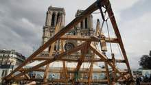 Зрубають тисячу 100-річних дубів для шпилю: як реконструюватимуть Нотр-Дам
