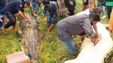 Отец бил голыми руками: крокодил полностью проглотил 8-летнего мальчика – фото