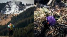 У Карпатах спалахнула пожежа на популярній серед туристів вершині: промовисті кадри