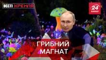 Вєсті Кремля: У Росії посилили правила збору грибів