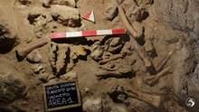 В Італії знайшли останки 9 неандертальців, яких могли вполювати гієни
