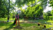 Листья будут фиолетовыми – в Запорожье дети употребляли наркотики на площадке: видео
