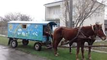 Діти їздять у садок на кареті на Рівненщині: фото