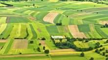 Тисячі гектарів найкращих земель України розграбовані, – Держгеокадастр