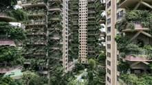 У Китаї багатоповерхівки з вертикальним лісом заполонили комарі: чому там не хочуть жити люди