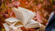 5 книг, які можна почитати в дорозі, у горах або біля моря: добірка для туриста