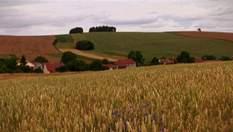 Чеська Гана - територія працьовитих землеробів