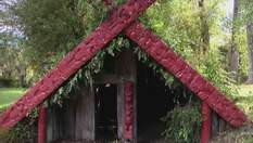 Залив Пленти - место, где живут племена с 700-летней историей