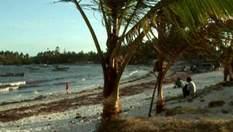 Суахили - неповторимое побережье Кении