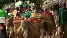 Ламу - город африканской истории и архитектуры