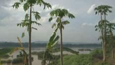 Місця, де нелегко живеться: Баміан, Нігде та Патагонія