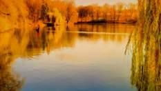 """Парк """"Софіївка"""" — місце, що надихає поетів та художників"""