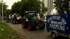 Столицу Бельгии заполонили тракторы