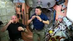 Український сервіс допомагає американцям купувати житло, астронавти підіймуть келихи в космосі