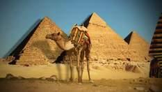 Забальзамированные животные и украшения фараонов: чем завораживают музеи Египта