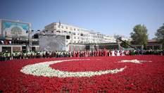 """""""Тюльпановый"""" рекорд: в Турции высадили крупнейший в мире флаг"""