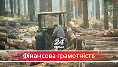 Почему в стране отсутствует верховенство права, без которого невозможна успешная Украина