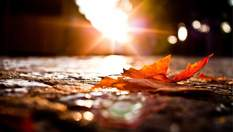 Прогноз погоди на 17 жовтня: бабине літо досягне свого піку