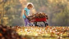 Прогноз погоди на 18 жовтня: очікується майже літня спека