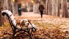 Прогноз погоди на 18 листопада: холодно, але опадів не буде