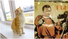 Самые смешные мемы недели: кот Порошенко и Янукович-красногвардеец
