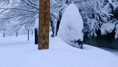 Юг США страдает от сильных снегопадов фото, видео