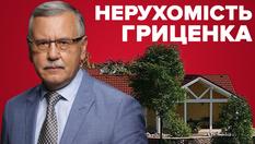 Маєток в Конча-Заспі та елітні квартири у дружини: яку нерухомість приховує Анатолій Гриценко