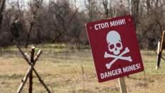 Хто допомагає Україні очистити землі Донбасу та коли там буде безпечно