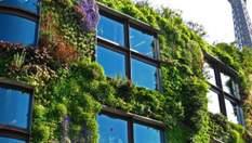 Деревья на крышах и овощные грядки на террасах: фото и видео города будущего
