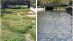 У Криму майже пересохла ріка Салгир: фото зникнення природи