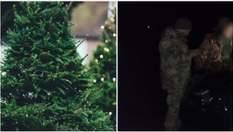 Крадені ялинки в оселях: як в Україні та Канаді намагалися заробити на зимові свята