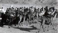 Авантюристи, які змінили світ: найцікавіше про повстанців-аравійців
