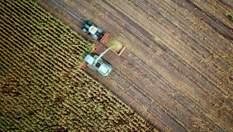Занепад сільського господарства у Криму: чому українці стали успішнішими за росіян