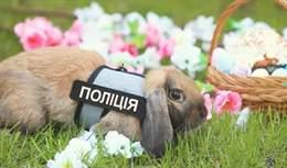 В університеті внутрішніх справ з'явився кролик-поліцейський: великодні фото