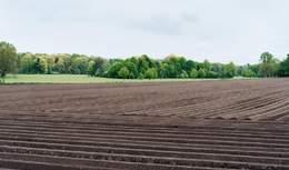 Продаж землі через електронні аукціони: що зміниться для власників і покупців