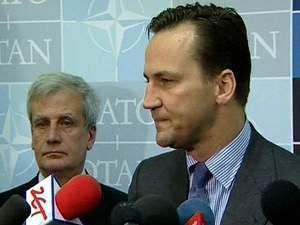 Активи Януковича мають піти на підтримку реформ в Україні, — Польща