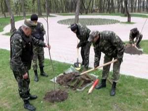 В пам'ять про Небесну сотню у Києві висадили алею каштанів