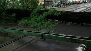 Потужний ураган прокотився Польщею: є жертва