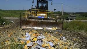 В Росії пропонують знищувати не тільки санкційні продукти