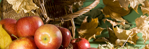 Яблочный Спас: что можно делать в этот день и приметы праздника