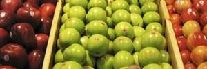 Жінку оштрафували на $500 за те, що хотіла взяти на борт яблуко
