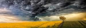 Прогноз погоди на 23 травня, на заході та сході дощитиме, решта території – сонце